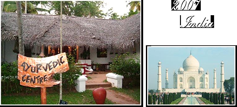 南インドのアーユルヴェーダは西洋医学でも東洋医学でも使用されています。